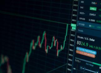 bullcryp crypto portfolio