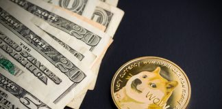 dogecoin accepted