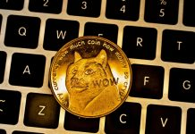 CryptoMode Dogecoin Price Market Cap
