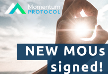momentum protocol featured