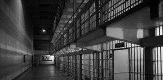 CryptoMode CardPlanet Operator Jail