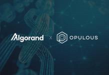 CryptoMode Opulous Algorand
