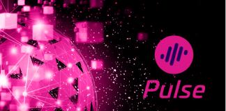 CryptoMode Pulse Network